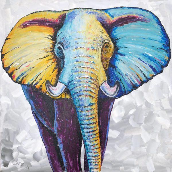"Elefant ""Tijani"""